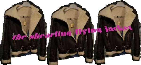 Asos Autumn/Winter 2010 shealing jacket asos fashion winter 2010 preview